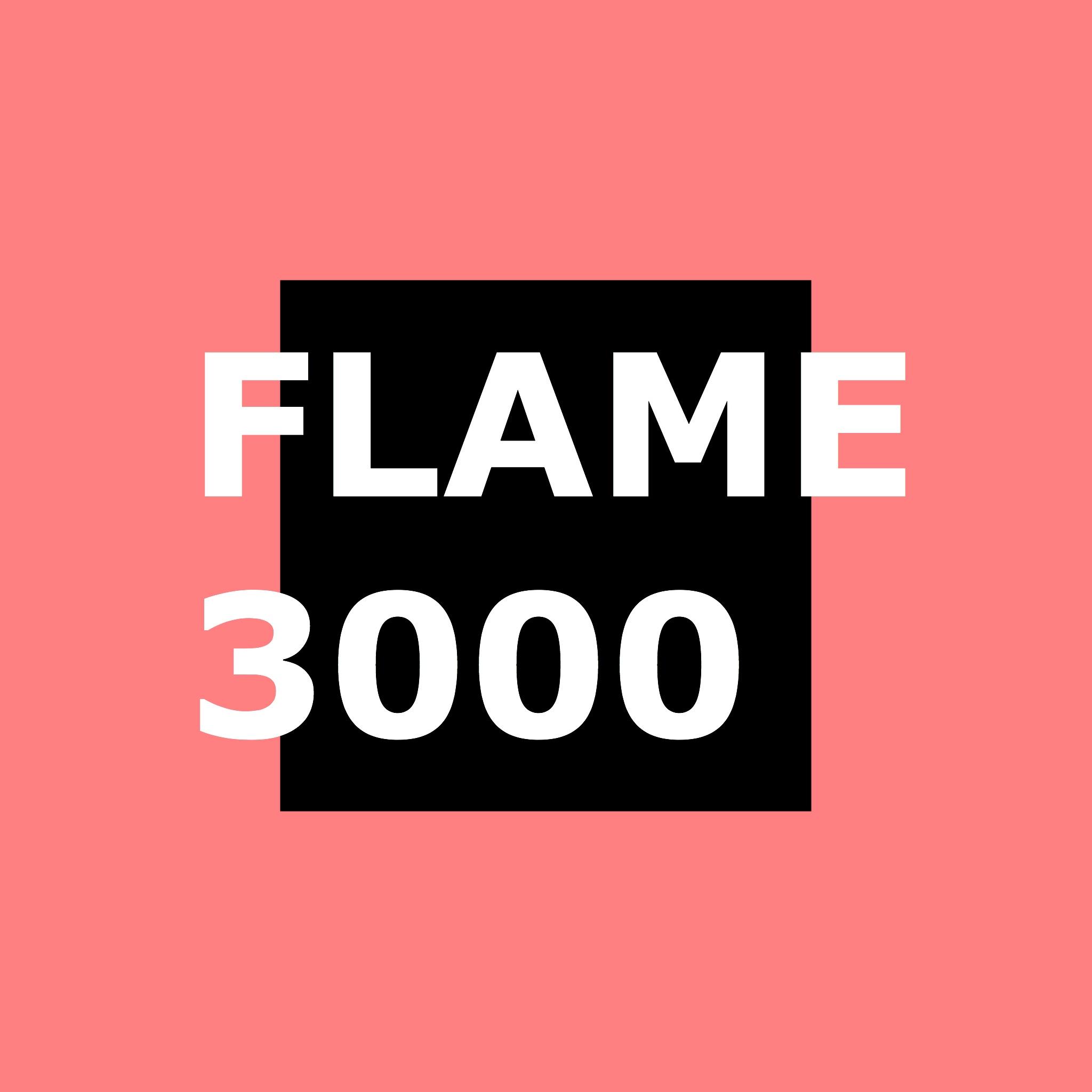 額3000