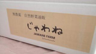 旬の野菜ボックス
